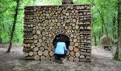 Trail Walk Somme-Leuze - Sentiers d'Art - Boucle de 16 km - Heure-Sinsin-Nettinne - Photo 3
