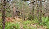 Randonnée Marche NOISY-SUR-ECOLE - Boucle les trois pignons Fontainebleau - Photo 4