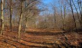 Trail Walk PIERREFONDS - en forêt de Compiègne_24_Tournantes sur le Voliard et sur la Fortelle_chaussée Brunehaut - Photo 140