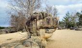 Randonnée Marche NOISY-SUR-ECOLE - Boucle les trois pignons Fontainebleau - Photo 8