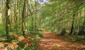Randonnée A pied VILLERS-COTTERETS - le GR11A  dans la Forêt de Retz  - Photo 149