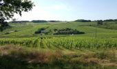 Trail Walk SAINT-JEAN-DES-VIGNES - Le tour des villages des pierres dorées jour 4 - Photo 1