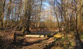 Trail Walk PIERREFONDS - en forêt de Compiègne_24_Tournantes sur le Voliard et sur la Fortelle_chaussée Brunehaut - Photo 68