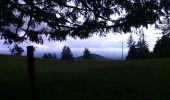 Randonnée Marche SENTHEIM - Sentheim Rossberg - Photo 6