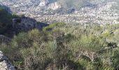 Randonnée Marche LA VALETTE-DU-VAR - la valette du var/le mont faron  - Photo 6
