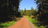 Randonnée A pied VILLERS-COTTERETS - le GR11A  dans la Forêt de Retz  - Photo 84
