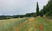 Randonnée Marche Gesves - Sentiers d'art / Gesves / Boucle