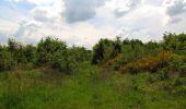 Randonnée Marche COYOLLES - en forêt de Retz_78_les rayons du Rond Capitaine - Photo 154