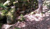 Randonnée Marche OTTROTT - Boucle Sainte Odile & mur Paien - Photo 2