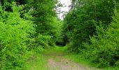 Randonnée Marche COYOLLES - en forêt de Retz_78_les rayons du Rond Capitaine - Photo 7
