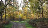 Randonnée Marche SAINT-JEAN-AUX-BOIS - en forêt de Compiègne_19_le Puits d'Antin_les Mares St-Louis_La Muette - Photo 49