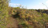 Trail Walk Namur - Balade dans les anciennes carrières d'Asty-Moulin - Photo 4