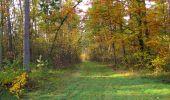 Randonnée Marche SAINT-JEAN-AUX-BOIS - en forêt de Compiègne_19_le Puits d'Antin_les Mares St-Louis_La Muette - Photo 38