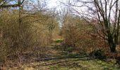 Trail Walk RETHEUIL - en forêt de Retz_76_dans les forêts de Retz et de Compiègne - Photo 42
