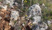Trail Walk SAINT-QUENTIN-LA-POTERIE - Mont bouquet  - Photo 1