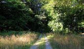 Trail Walk DAMPLEUX - en forêt de Retz_80_sur la Route Tortue et la Route Droite - Photo 55
