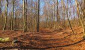 Trail Walk PIERREFONDS - en forêt de Compiègne_24_Tournantes sur le Voliard et sur la Fortelle_chaussée Brunehaut - Photo 31