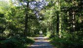 Trail Walk DAMPLEUX - en forêt de Retz_80_sur la Route Tortue et la Route Droite - Photo 233