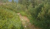 Randonnée Marche BONNEVAL - les pissus  - Photo 3