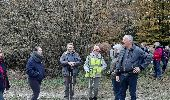 Trail Walk Arelaune-en-Seine - FORET BROTONNE - Photo 2