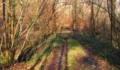 Trail On foot VIEUX-MOULIN - en forêt de Compiègne_23_la Grotte des Ramoneurs_le Mont Berny - Photo 33