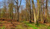 Randonnée Marche LONGPONT - en forêt de Retz_77_Longpont_Puiseux en Retz_AR - Photo 45