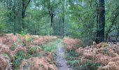 Randonnée Marche Profondeville - Sept Meuse Profondeville  21,4 km - Photo 14