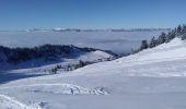 Trail Nordic skiing ALLEVARD - tricotage crête des Plagnes - Photo 1