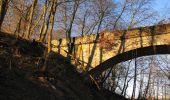 Trail Walk RETHEUIL - en forêt de Retz_76_dans les forêts de Retz et de Compiègne - Photo 23