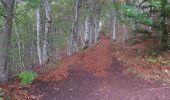 Trail Walk AYDAT - Les trois puys - Photo 2