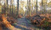 Trail Walk SAINT-JEAN-AUX-BOIS - en forêt de Compiègne_33_12_2019_les Tournantes de l'étang Saint-Jean et des Prés Saint-Jean - Photo 102
