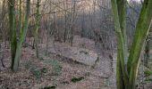 Trail Walk RETHEUIL - en forêt de Retz_76_dans les forêts de Retz et de Compiègne - Photo 17
