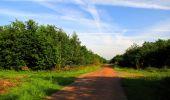 Randonnée Marche COYOLLES - en forêt de Retz_78_les rayons du Rond Capitaine - Photo 133