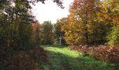 Randonnée Marche SAINT-JEAN-AUX-BOIS - en forêt de Compiègne_32_11_2019_les Tournantes de la Muette et sous la Tête Saint-Jean - Photo 138