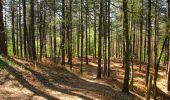 Randonnée Marche LONGPONT - en forêt de Retz_77_Longpont_Puiseux en Retz_AR - Photo 28