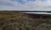 Randonnée Marche Knokke-Heist - zwin balade didactique + verte + bleue - droit d entrée 29€ 2 personnes + parking - Photo 5