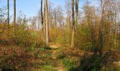Randonnée Marche LONGPONT - en forêt de Retz_77_Longpont_Puiseux en Retz_AR - Photo 41