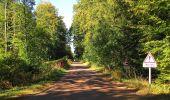 Trail Walk DAMPLEUX - en forêt de Retz_80_sur la Route Tortue et la Route Droite - Photo 231