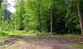 Randonnée Marche COYOLLES - en forêt de Retz_78_les rayons du Rond Capitaine - Photo 66