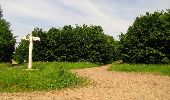 Randonnée Marche COYOLLES - en forêt de Retz_78_les rayons du Rond Capitaine - Photo 116