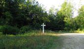 Randonnée Marche SAINT-JEAN-AUX-BOIS - en forêt de Compiègne_2_ruines gallo-romaines de Champlieu_les Petits Monts - Photo 169