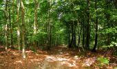 Randonnée Marche HARAMONT - en forêt de Retz_79_08_2019_vers Taillefontaine et Retheuil par les lisières - Photo 98