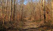 Trail Walk PIERREFONDS - en forêt de Compiègne_24_Tournantes sur le Voliard et sur la Fortelle_chaussée Brunehaut - Photo 94
