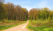 Randonnée Marche LONGPONT - en forêt de Retz_77_Longpont_Puiseux en Retz_AR - Photo 7