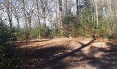 Randonnée Marche nordique Jalhay - goe_22_02_2021 - Photo 4