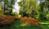 Randonnée Marche SAINT-JEAN-AUX-BOIS - en forêt de Compiègne_21_la Muette_les Clavières_la Brévière - Photo 92