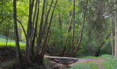 Randonnée Marche Tellin - repérage zero carbone 16092020 - Photo 16