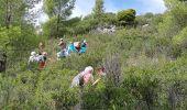 Randonnée Marche AUBAGNE - aubagne pagnol - Photo 23