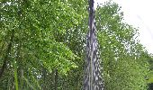 Randonnée Marche Gesves - Sentiers d'Art 2019 / Gesves-Ohey - Photo 13