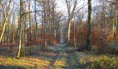 Trail Walk SAINT-JEAN-AUX-BOIS - en forêt de Compiègne_33_12_2019_les Tournantes de l'étang Saint-Jean et des Prés Saint-Jean - Photo 103